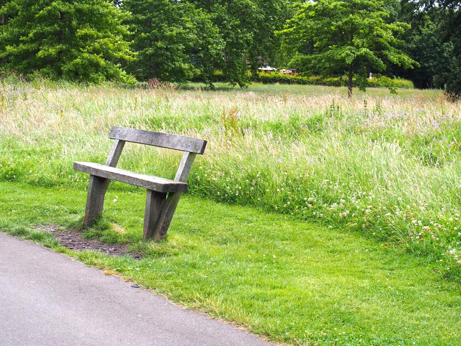 Regents Park 10 cosas que ver banco