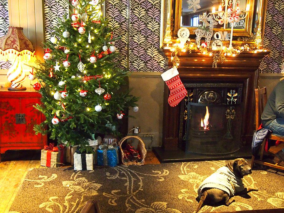 hampstead en navidad árbol