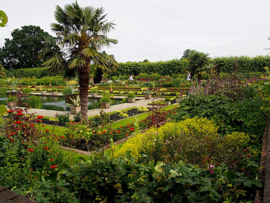 Los jardines del Palacio de Kensington, con una palmera y parterres de flores y arbustos.