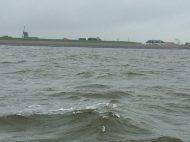 2016 Waddenzee vor Texel