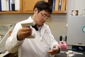 Dr. Wang