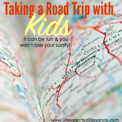 Taking a Road Trip with Young Children | It can be FUN and You won't Lose Your SANITY