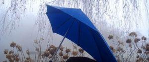 The Senz° XL Storm Umbrella – A Senz-ible Umbrella For A Rainy World