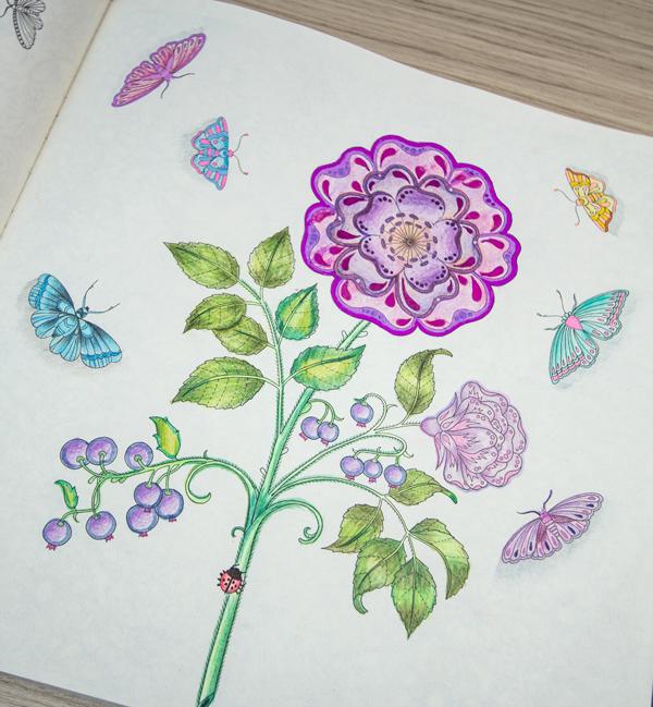 flores jardim secreto:jardim secreto pinturas ideias inspirações14