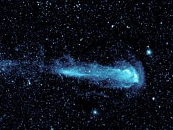 Mira and its tail. Image credit: NASA/JPL-Caltech