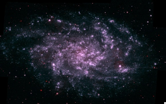 M33. Image credit: NASA/Swift