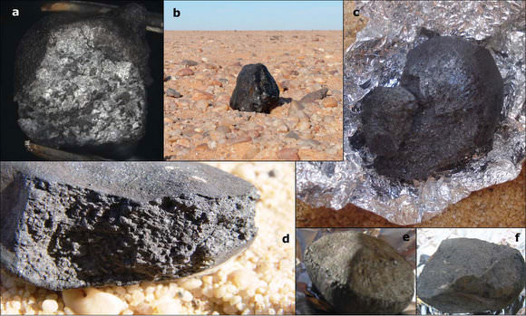 Various meteorites from 2008 TC3. Credit: P. Jenniskens, et. al.  Click image for full description