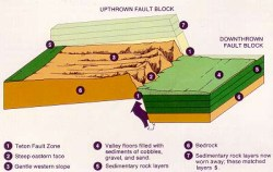 Diagram of a fault-block mountain range.