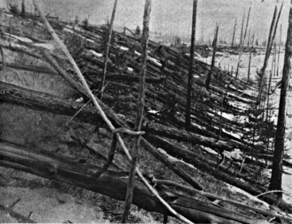 Fallen trees from the Tunguska Event in 1908.