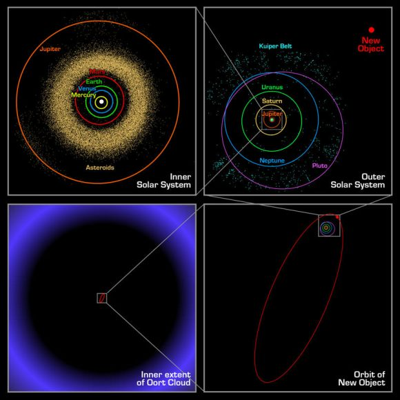 Sedna's orbit, compared to other bodies in the Solar System and the Kuiper Belt. Credit: web.gps.caltech.edu