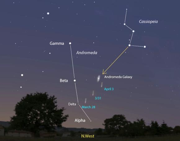 Comet PANSTARRS shown every three days as it moves across Andromeda, passing near the Andromeda Galaxy around April 3. You can use Cassiopeia to point you to Beta Andromedae and from there to the comet.  The map shows the sky facing northwest about one hour after sunset. Comet and galaxy brightness are exaggerated for the sake of illustration. Stellarium