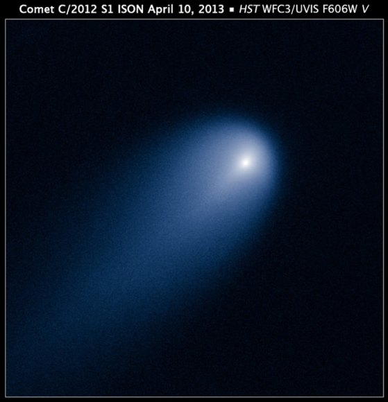 Comet ISON was used in a search for time travelers. NASA's Hubble Space Telescope provides a close-up look of Comet ISON (C/2012 S1), as photographed on April 10. Credit: NASA, ESA, J.-Y. Li (Planetary Science Institute), and the Hubble Comet ISON Imaging Science Team.