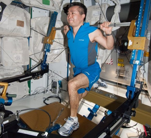 Expedition 38/39 astronaut Koichi Wakata (Japanese Aerospace Exploration Agency) uses the advanced Resistive Exercise Device (aRED) in the Tranquility node of the International Space Station in February 2014. Credit: NASA
