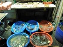 Restaurante de calle especializado en marisco