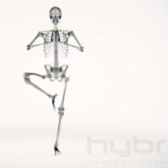 Yoga, nuestro cuerpo y rayos X
