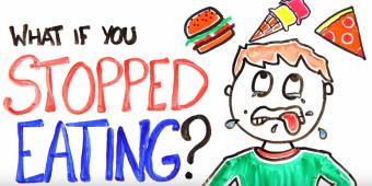 ¿Qué pasa si dejamos de comer?