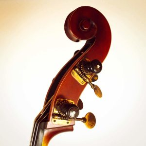 antiqued_hat_peg_tuner_double_bass-2