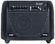 Acoustic Image Double Bass Amp - Contra S4 Combo