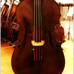 SOLD: A Very Special UB Deluxe HYBRID Double Bass- Carved Top Hybrid Upright Bass