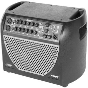 Acoustic Image Double Bass Amp - Corus S4 Combo