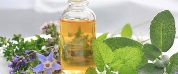 ¿Sabias que el aceite de orégano ayuda a tratar los hongos en las uñas?