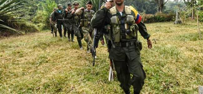 Unos 80 mil hombres garantizarán seguridad en municipios dejados por las Farc