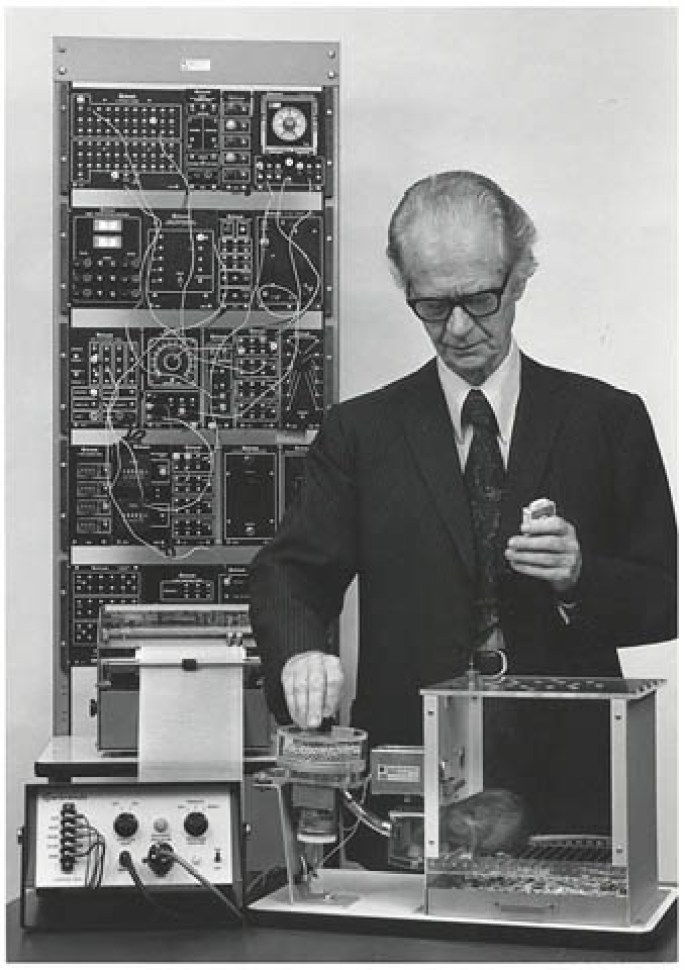 skinner-lab-work-70