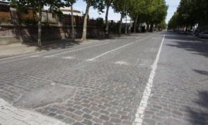 Les pavs et les platanes de l&#039;avenue du Port
