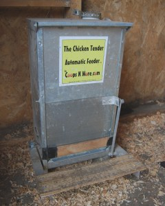 Using a treadle feeder like this one cuts down on problems with rats as they aren't heavy enough to trip it open.