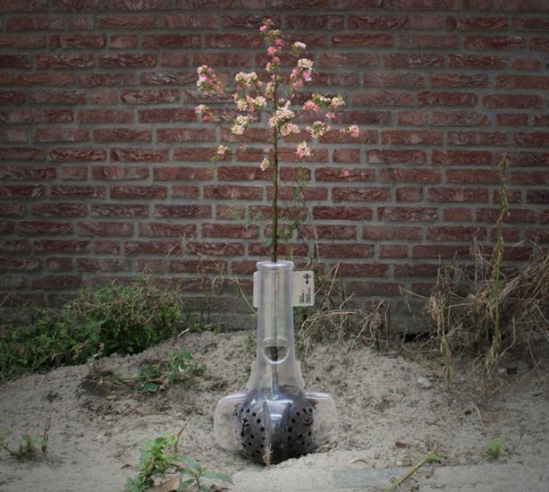 bioplastic_planter