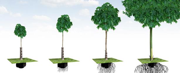 bioplastic_planter_series