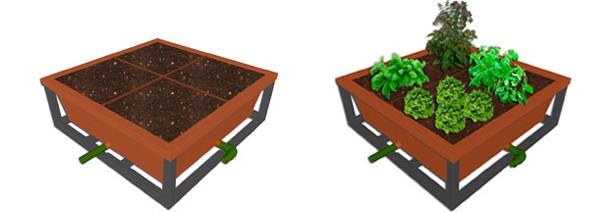 combined_plants_noplants_1