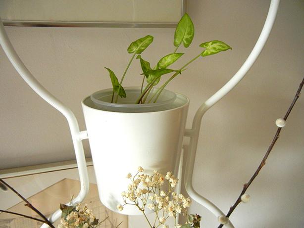 how to make inexpensive diy vertical garden room divider from ikea plant stands urban gardens. Black Bedroom Furniture Sets. Home Design Ideas