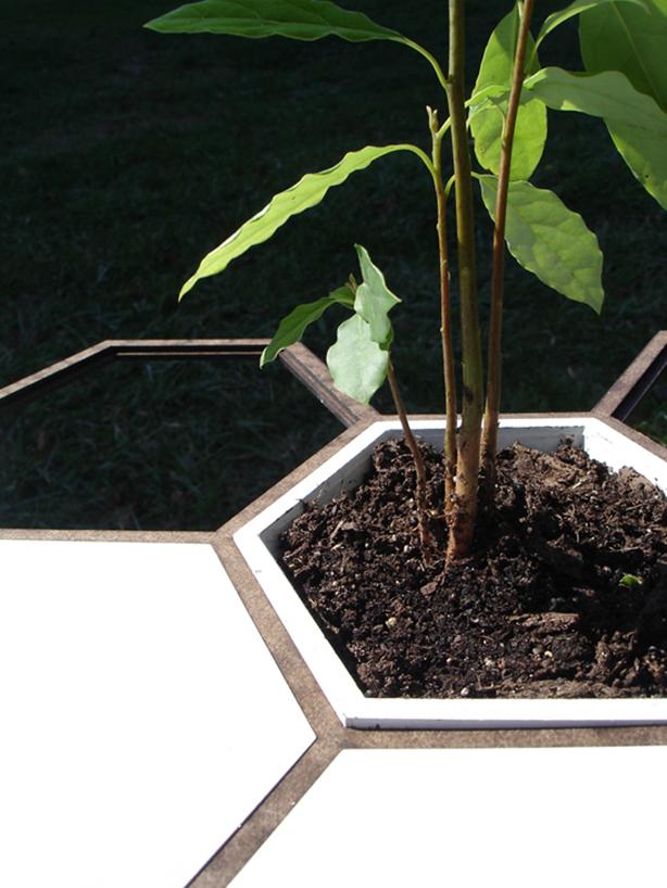 hex-gardening-system