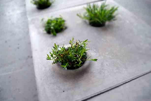 green-paver