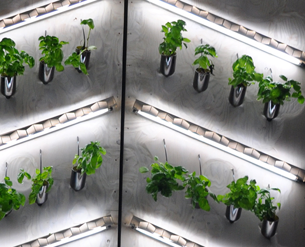 hydro-bottle-wall-grouped-urbangardenweb