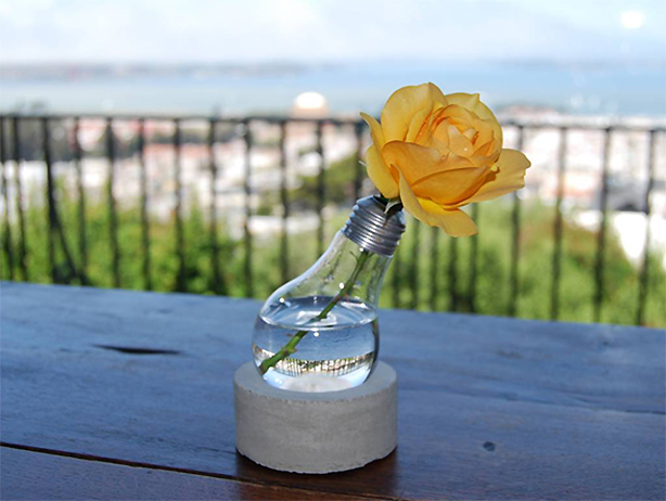 glowingplants-rose-in-light-bulb-vase-$80