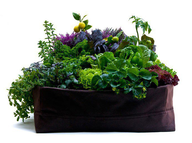 woolly-pockets-lilgreenmeadow-planter