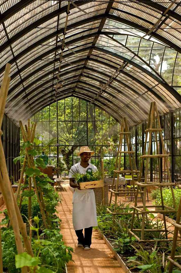 Babylonstoren--working-greenhouse
