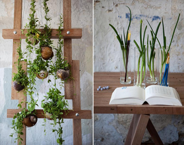 opus-studio-kokedama-hanging-and-desktop-gardens