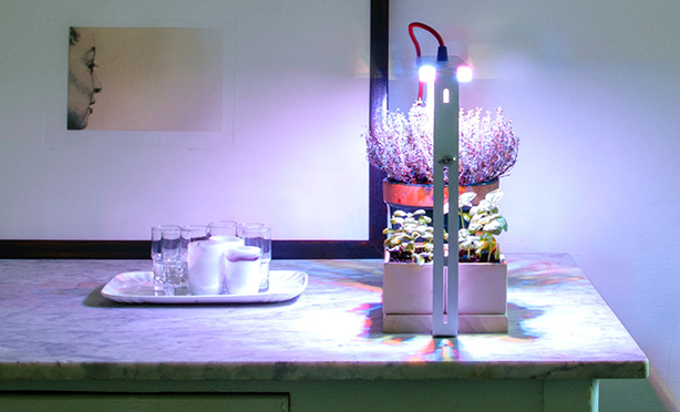 quadra_product_on-kitchen-counter