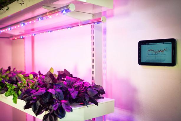 smartfarm-monitoring-614