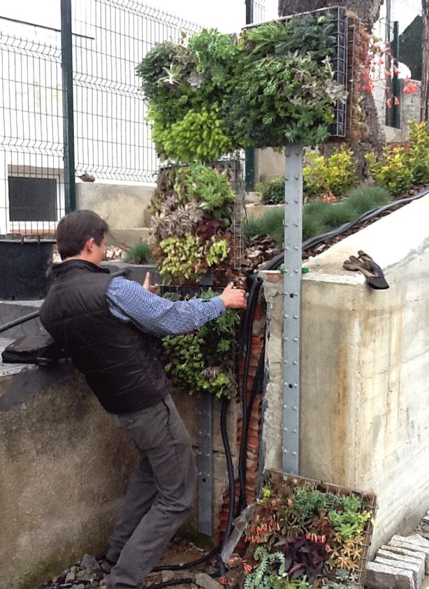 vertical-succulent-garden-outdoor-shower-installation-urbangardensweb