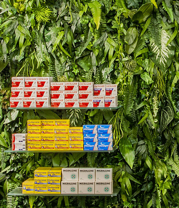 mapharmacie-vertical-garden-medicinal-plants-products