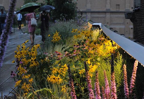 High Line CU Mixed Border Steven Severinghaus