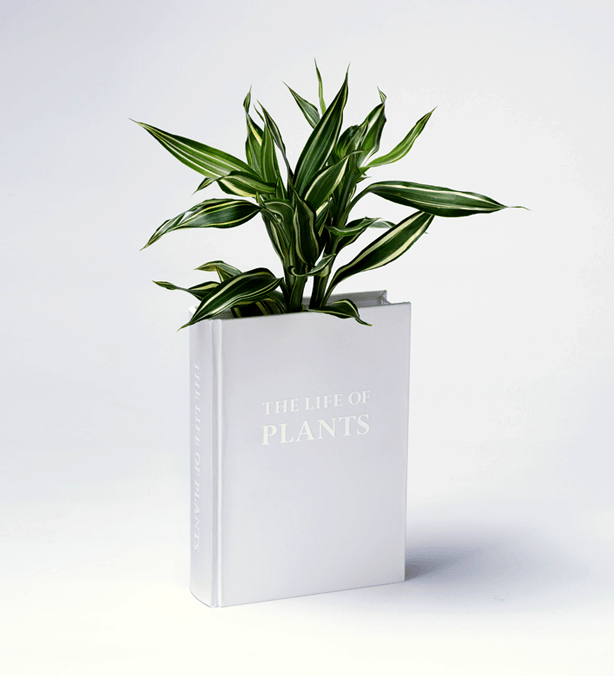yoy_book_planter-closed-cover