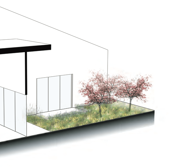 house-of-future-2020-garden