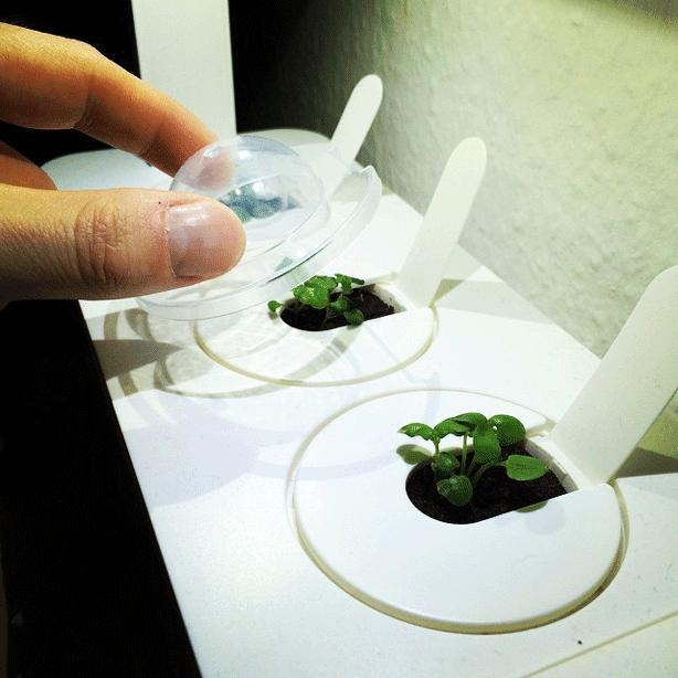 click-and-grow-smart-herb-garden-instagram-mondtagskind