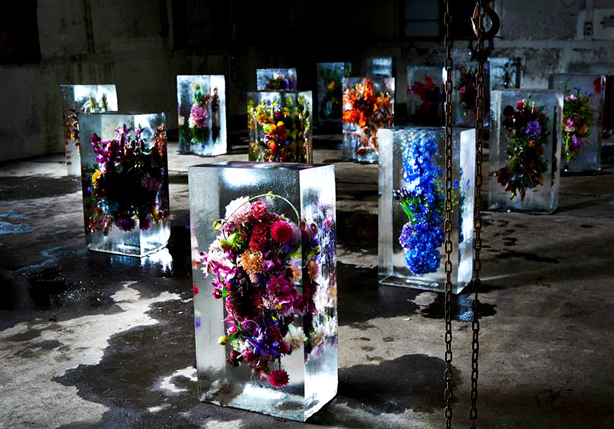 iced-flowers-ice-blocks-makoto-azuma-urbangardensweb