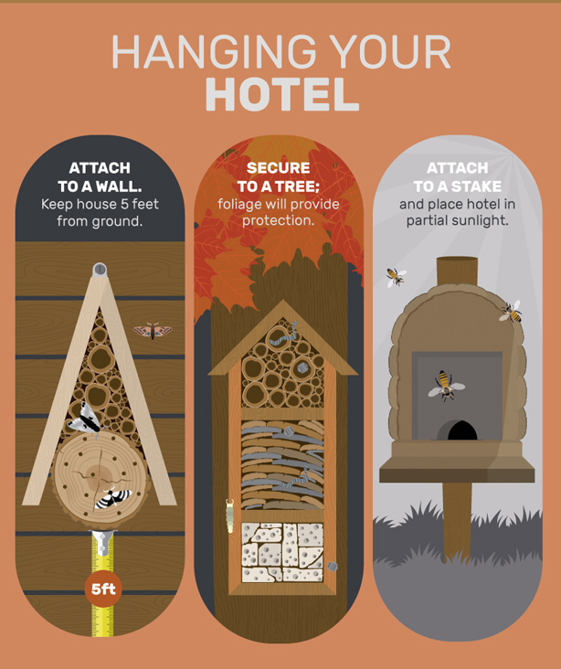 hanging-your-bug-hotel
